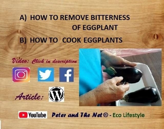 V3S1 eggplant