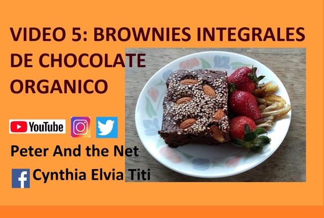 V5 Brownie